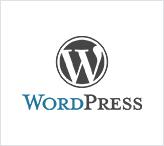 Hire Etech technology solutions for Wordpress development work